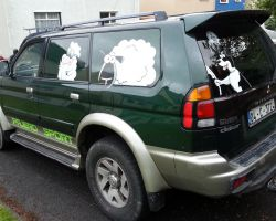 pajero-sheep-